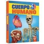 cuerpo_humano_3d_LXPHU1
